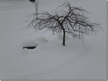 snow '10