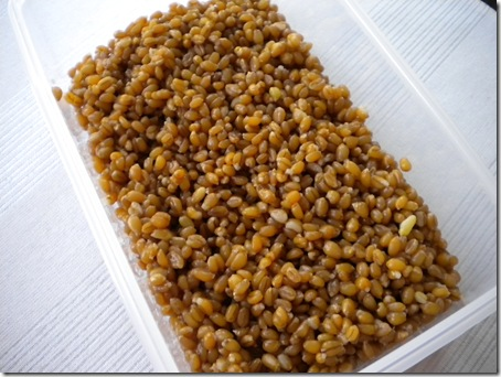 wheat berries