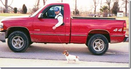man walking dog in truck